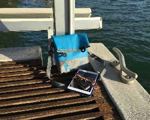 Брызгозащитная сумка Aquapac 052 - TrailProof™ Tote Bag – Small.. Aquapac - №1 в мире водонепроницаемых чехлов и сумок. Фото 4